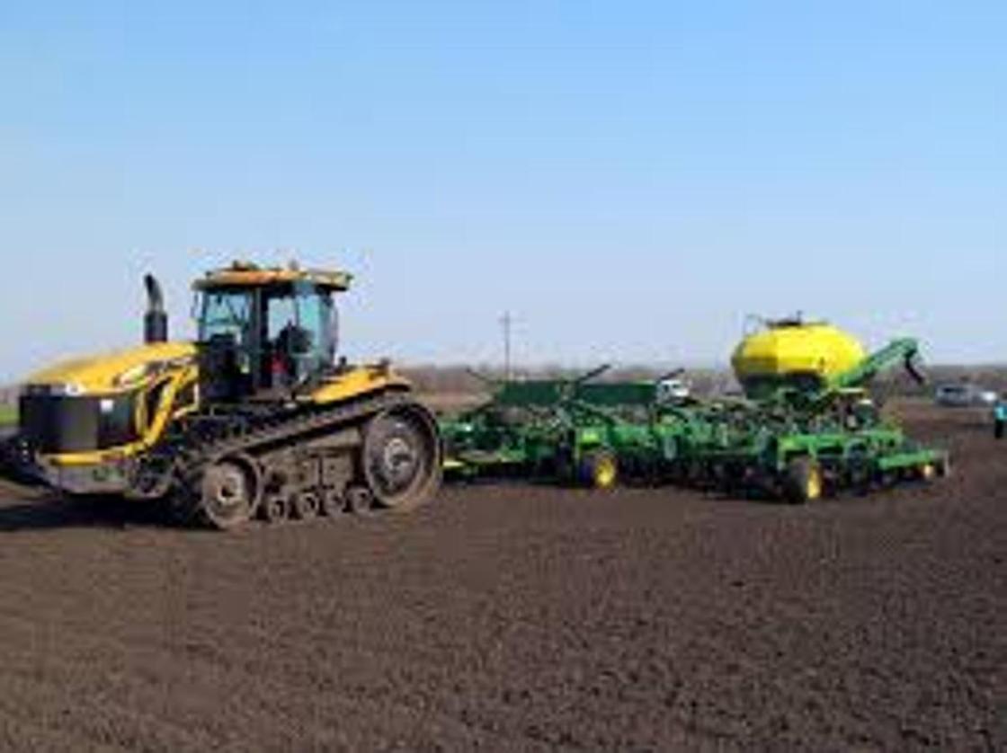 Лидирующие позиции занимает Акмолинская область в сфере сельского хозяйства