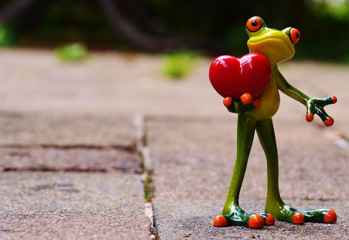 Лягушонок с сердечком