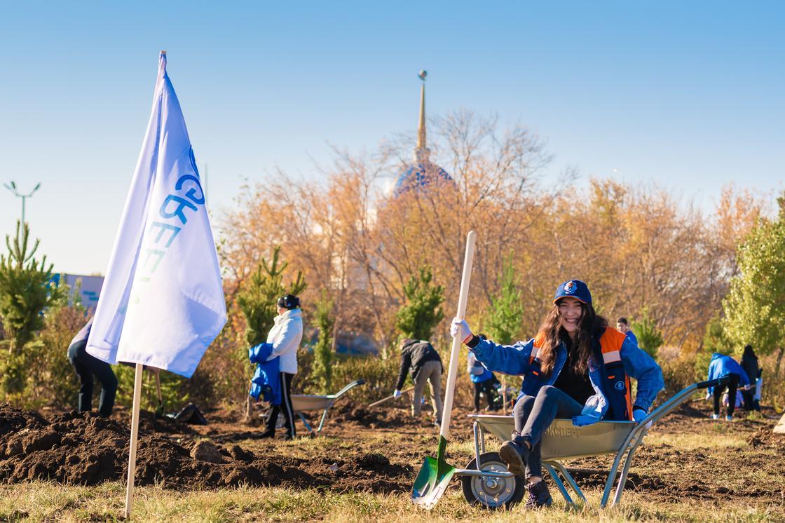 Более 2000 новых деревьев будет высажено в столице