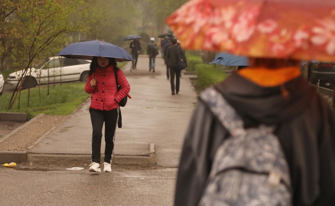 Осадки превысят норму в апреле в Алматы