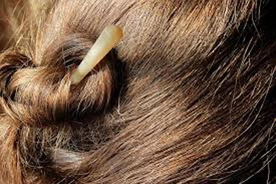Каштановый цвет волос: кому идет, фото, палитра, оттенки