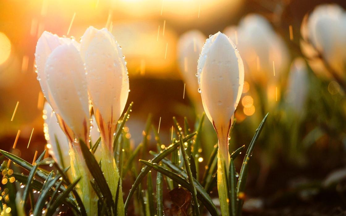 30-градусная жара ожидает казахстанцев в апреле