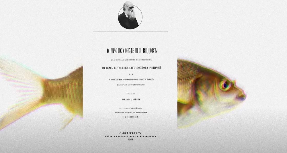 На фоне большого карпа размещена титульная страница научного труда Чарльза Дарвина с его портретом