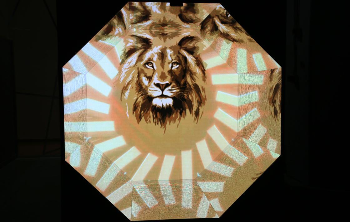 Алматинские креаторы провели один день в шкуре льва