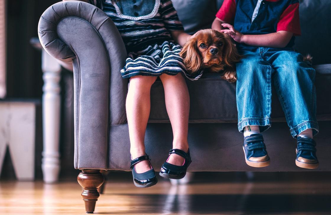 Дети сидят на диване с собакой