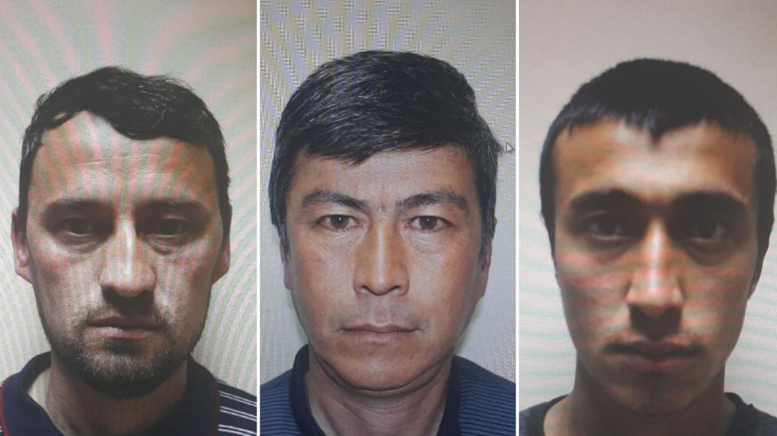 Трое иностранцев пытались пробраться в Алматы
