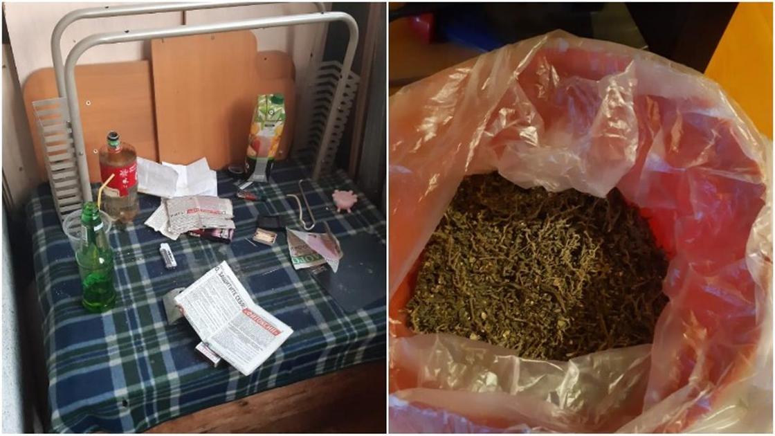 Хранение и употребление марихуаны статья семена конопляные чика