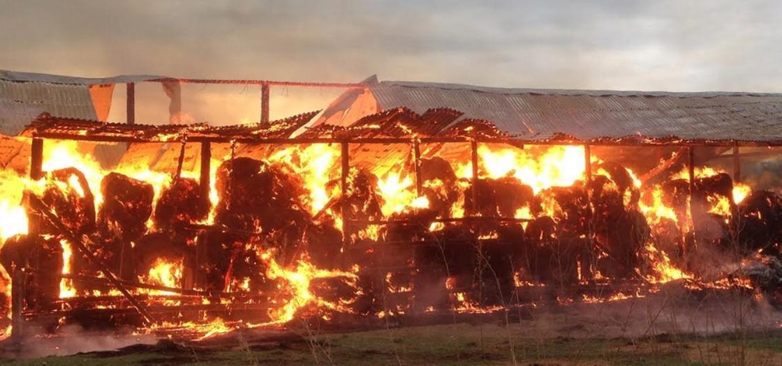 Поджигатели совершили 13 поджогов в селе в Атюбинской области