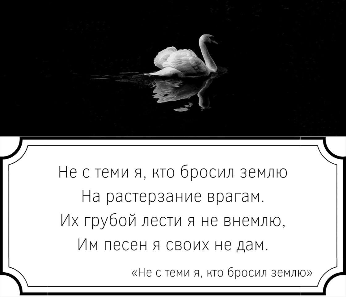 Отрывок из стихотворения Ахматовой