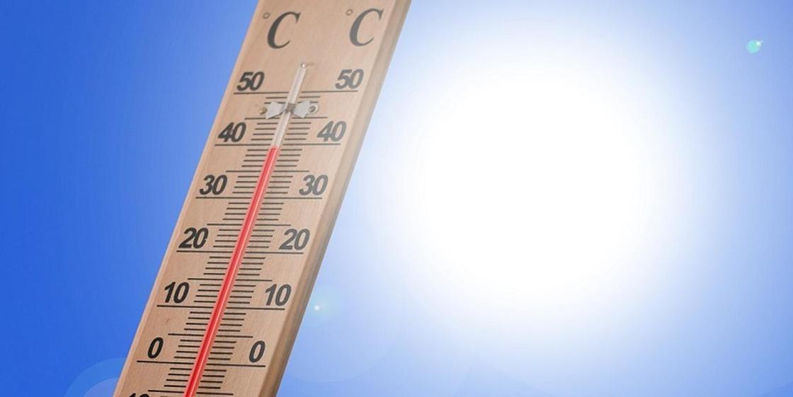 29 человек погибло из-за аномальной жары в Индии