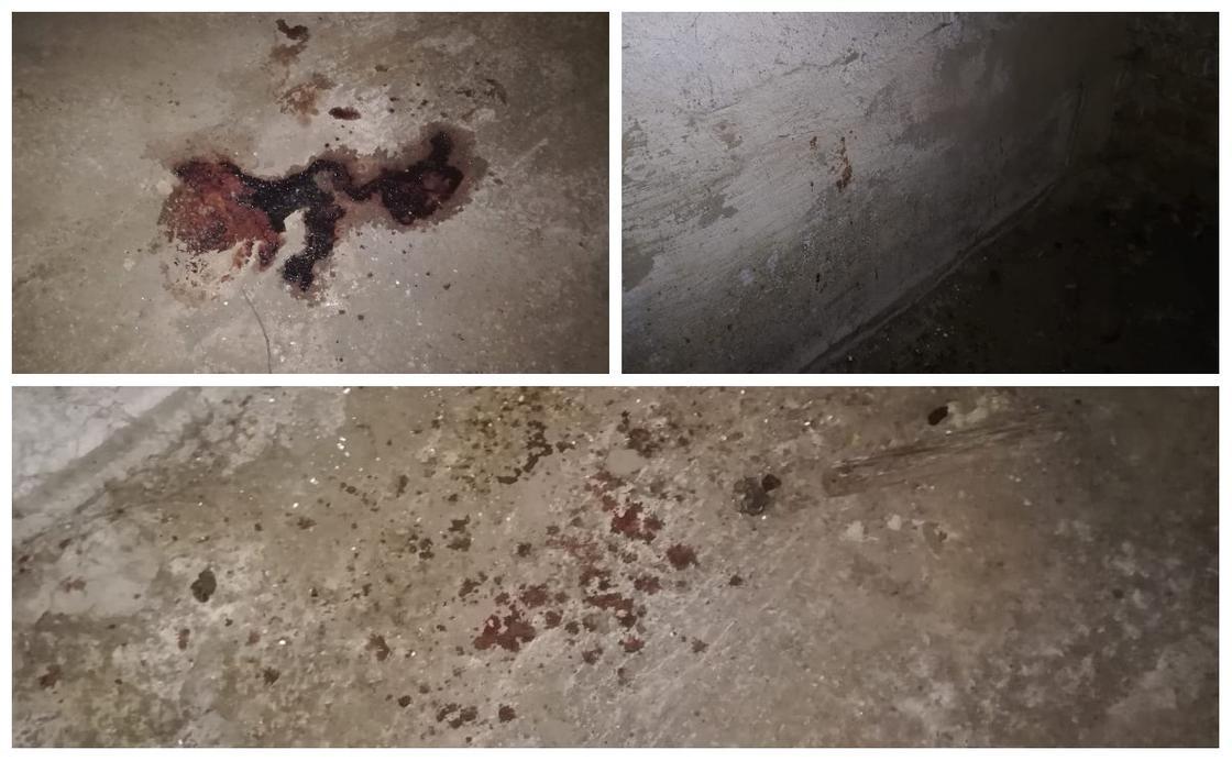 """""""Екі литр қан аққан"""": Алматы облысында жас жігіт жұмбақ жағдайда жоғалып кетті"""