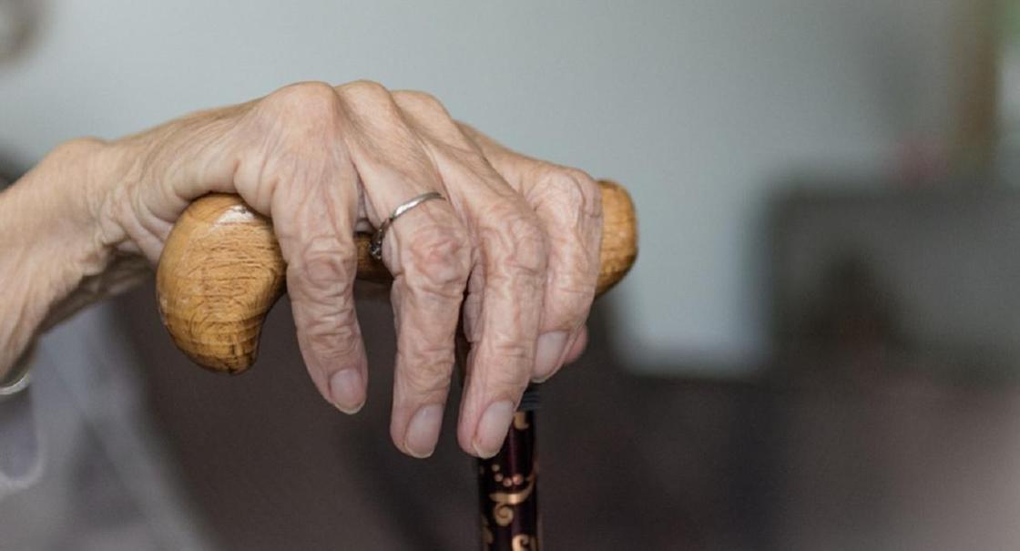 Зейнеткер мысығының салдарынан көз жұмды