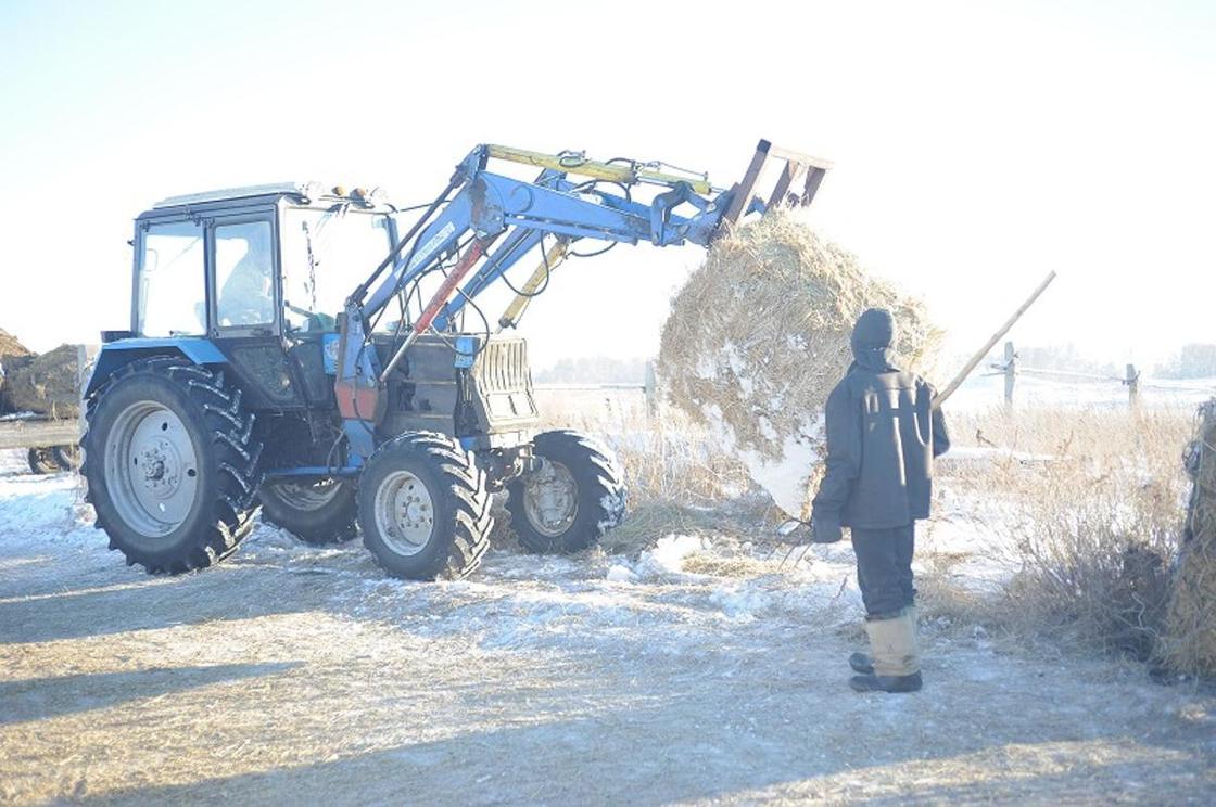Как программа «Сыбаға» помогает маленькому селу