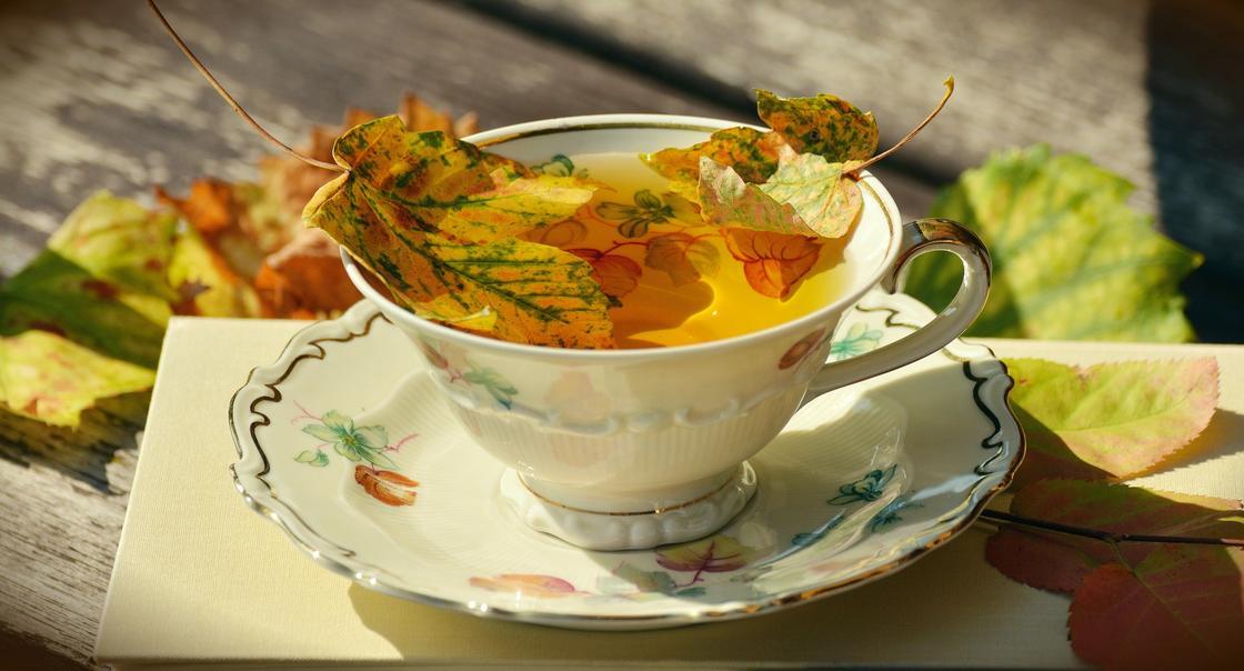 чашка осень