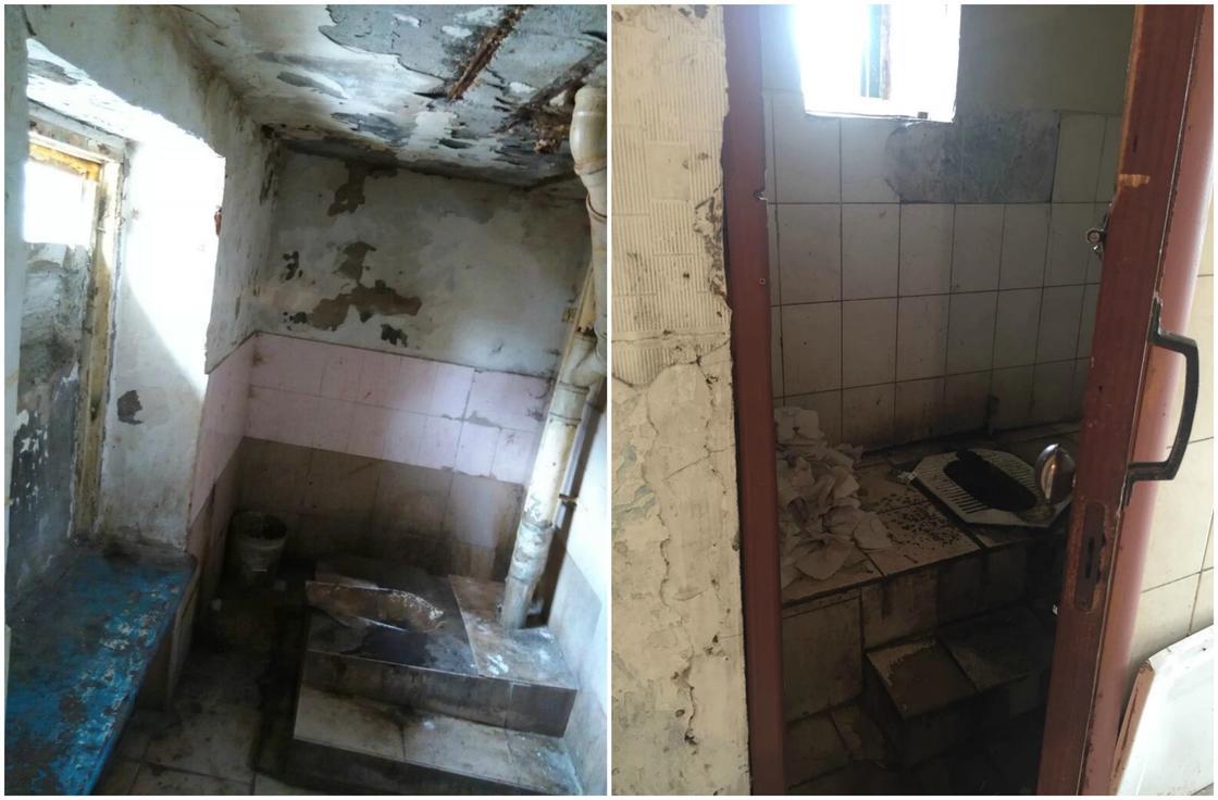 Плесень, грибки, клопы, блохи: Страшные кадры из общежития показали астанчане