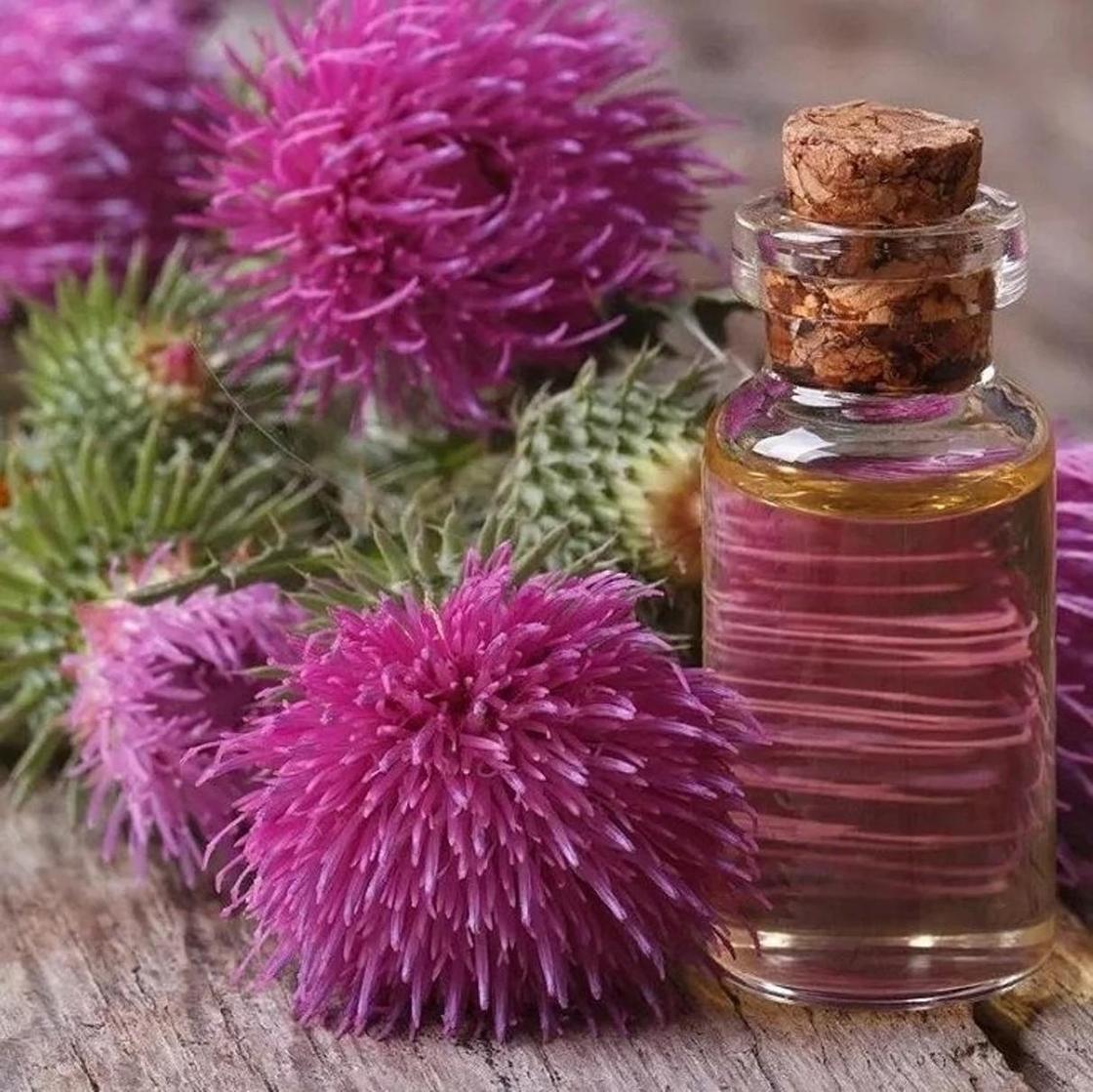Репейное масло для роста волос: применение