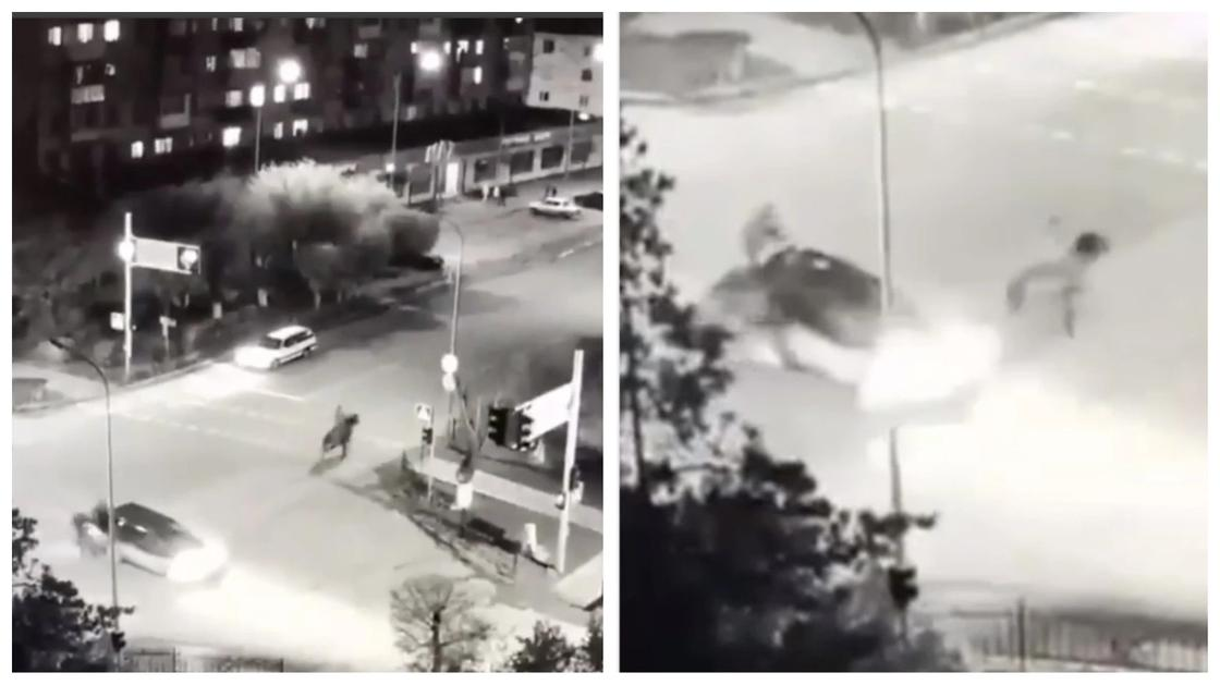 Индейцы в городе: конь на перекрестке врезался в автомобиль в Карагандинской области (видео)