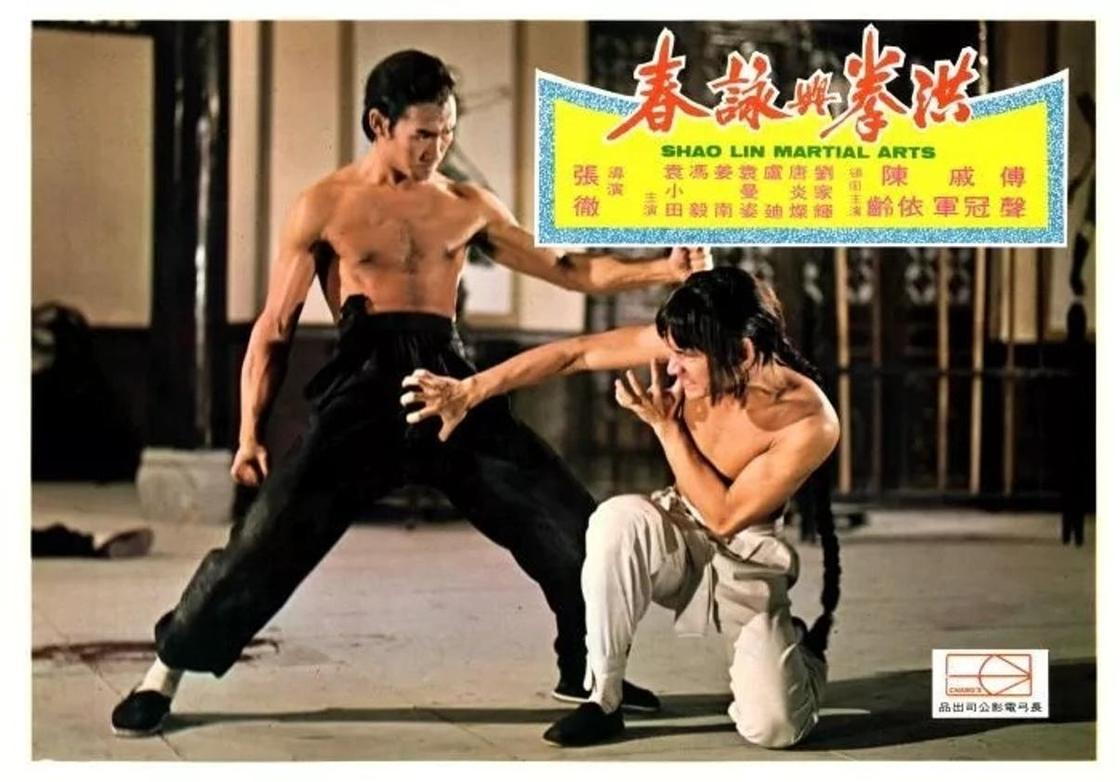 Лучшие фильмы про боевые искусства