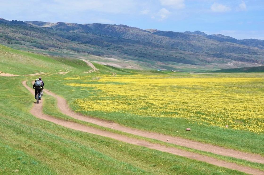 Где можно отдохнуть в Алматы на природе