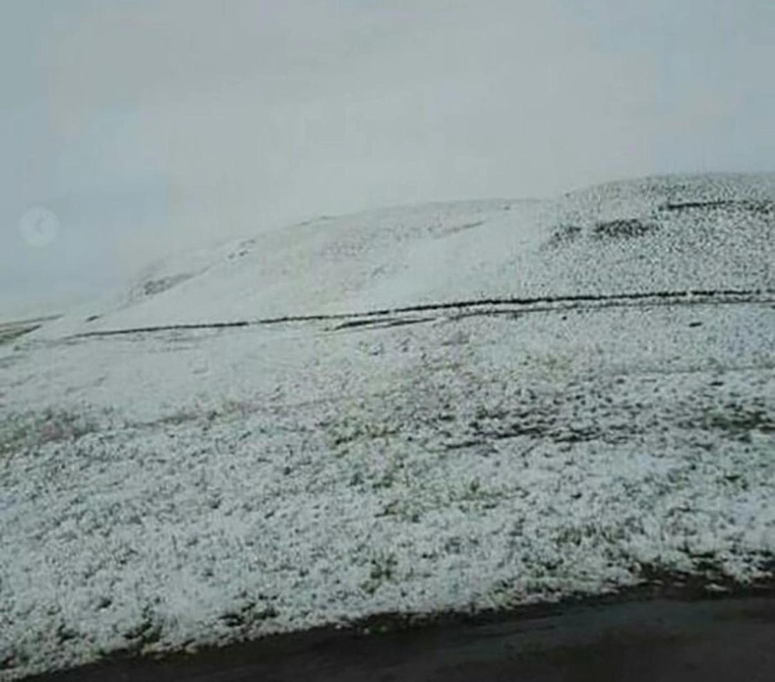 «Весна прошла мимо»: Снег выпал в Павлодарской и Карагандинской областях (фото, видео)