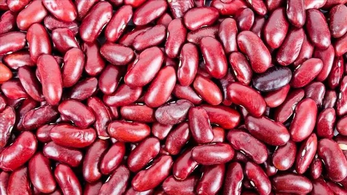 13 самых опасных продуктов в мире