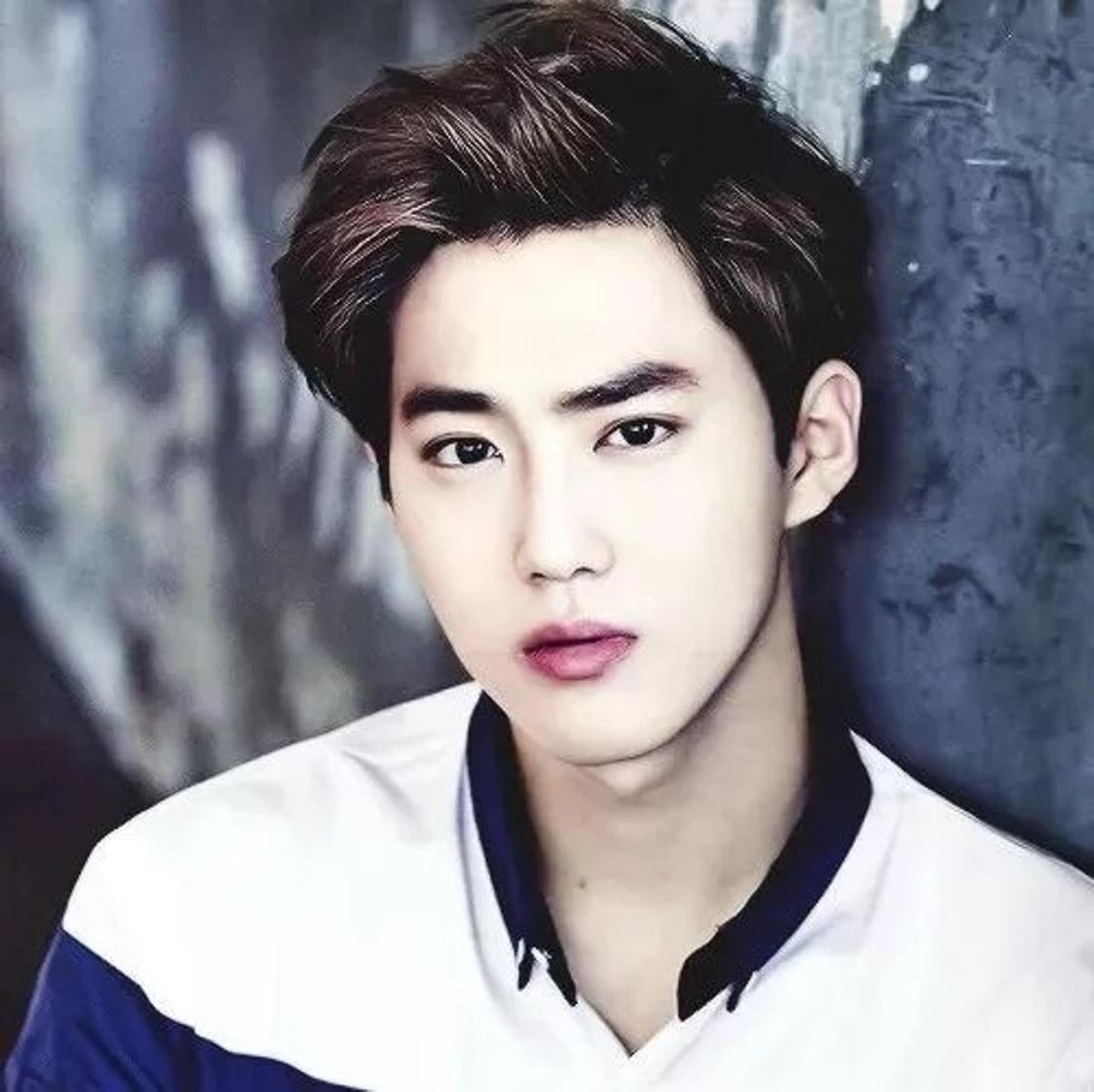 EXO: биография группы, факты