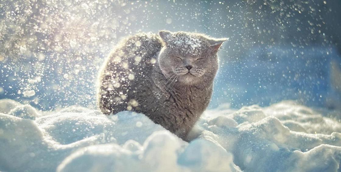 Прогноз погоды на выходные: понижение температуры ожидается в Казахстане