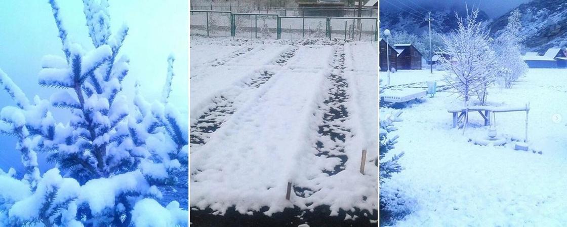 Снег в ВКО
