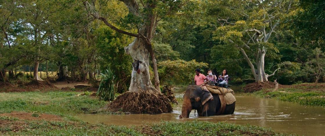 Приключения казахов на Шри-Ланке