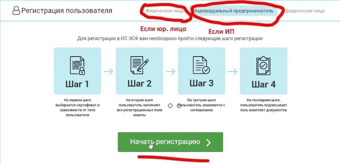 Esf.gov.kz регистрация ИП И ТОО: инструкция