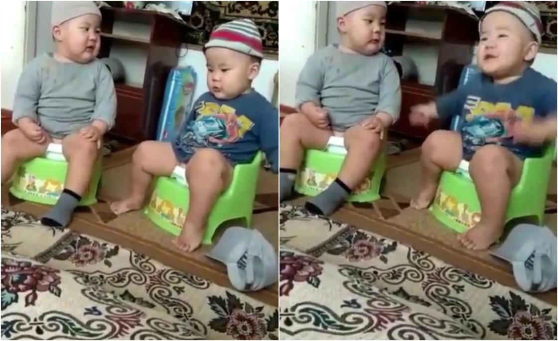 «Будущие министры»: «серьезный» разговор двух малышей на горшках появился в сети