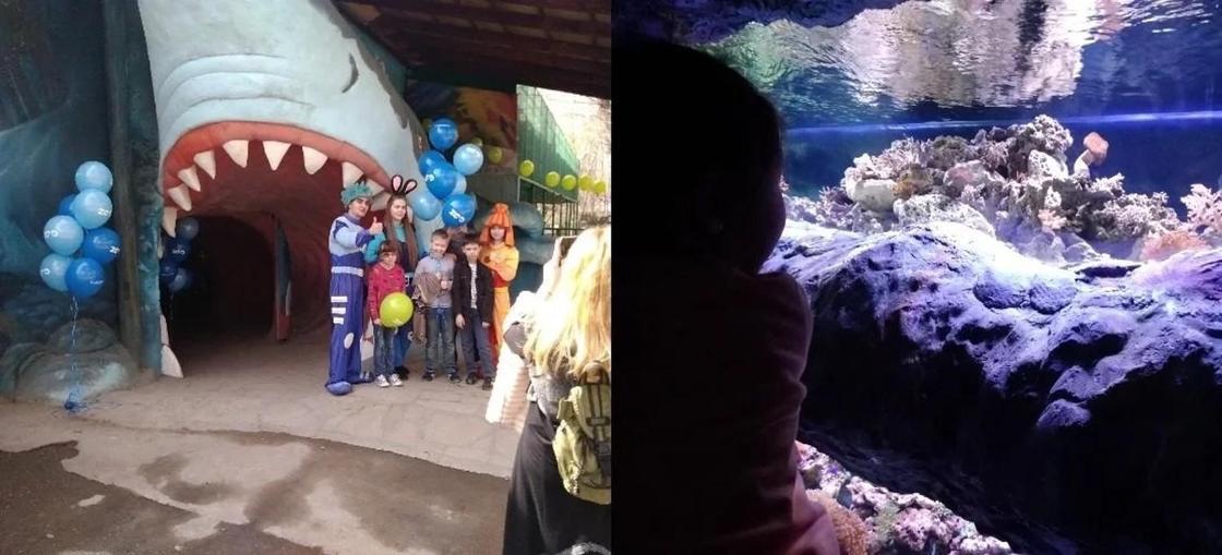 Крупнейший акванариум открылся в алматинском зоопарке