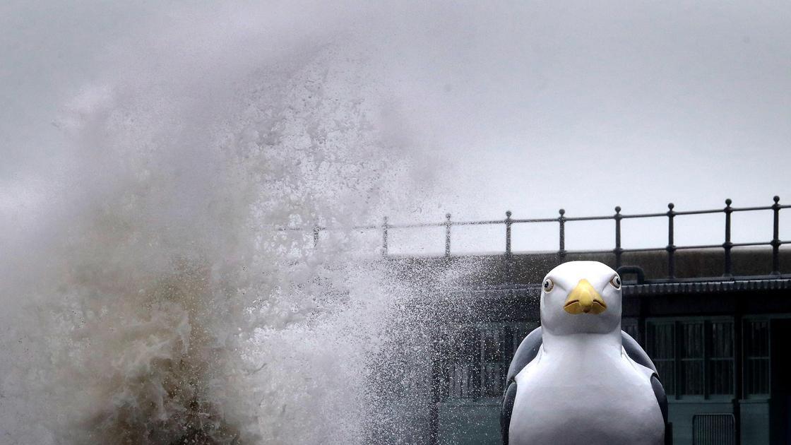 Высота волны во время шторма Алекс в Англии