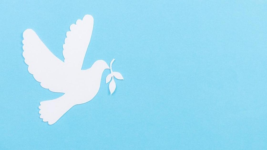 Белый бумажный голубь на голубом фоне