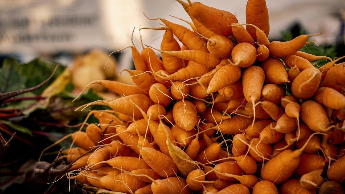 Морковь лежит на прилавке
