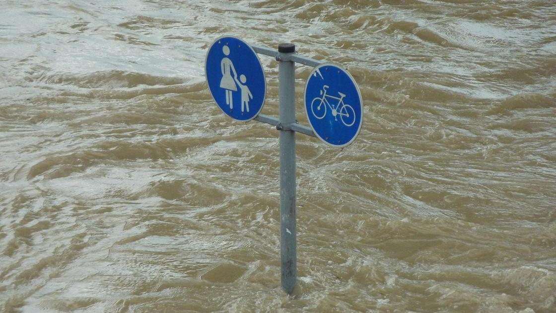 Дорожный знак в воде