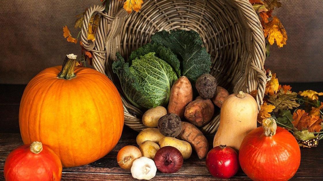 Набор овощей для осенних поделок