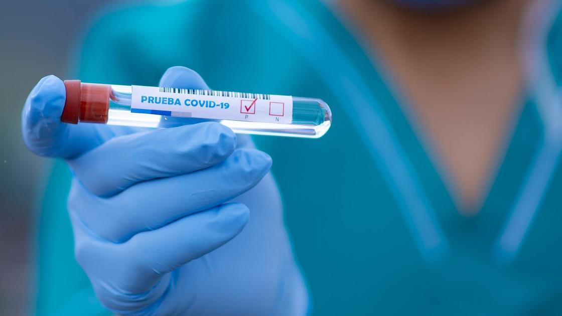 врач держит в руке тест на коронавирус