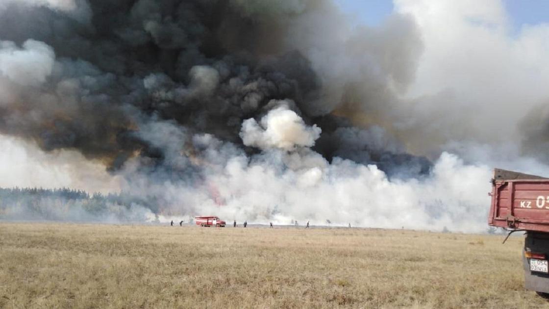 Дым поднимается над полем