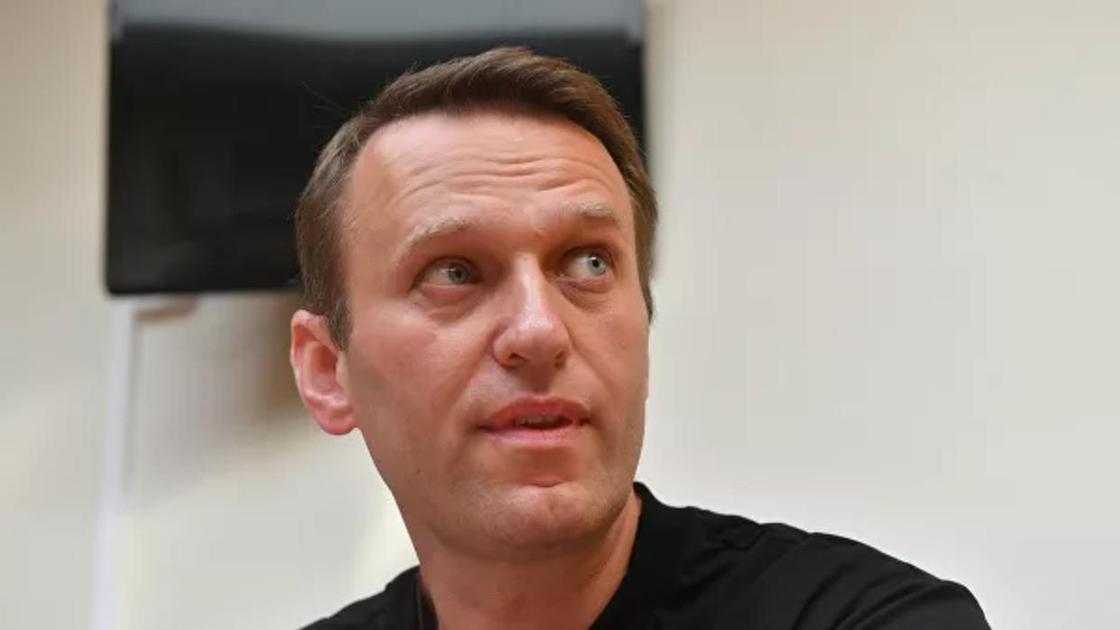 Навальный 2586