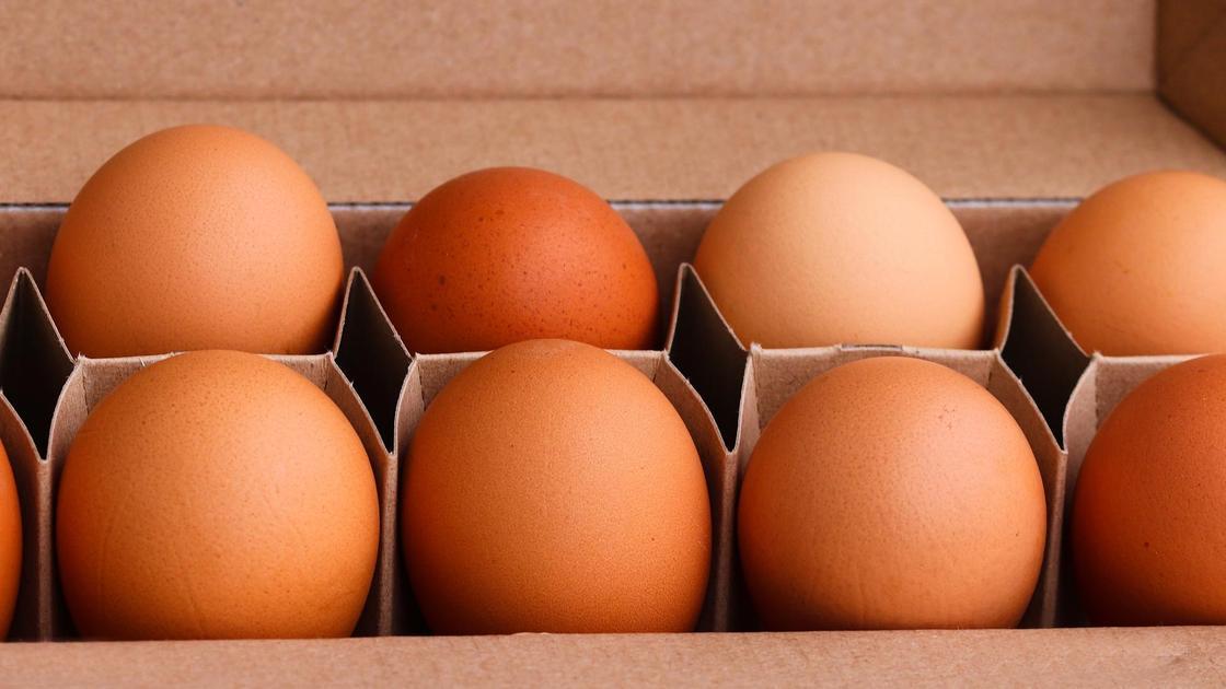 Яйца лежат в упаковке