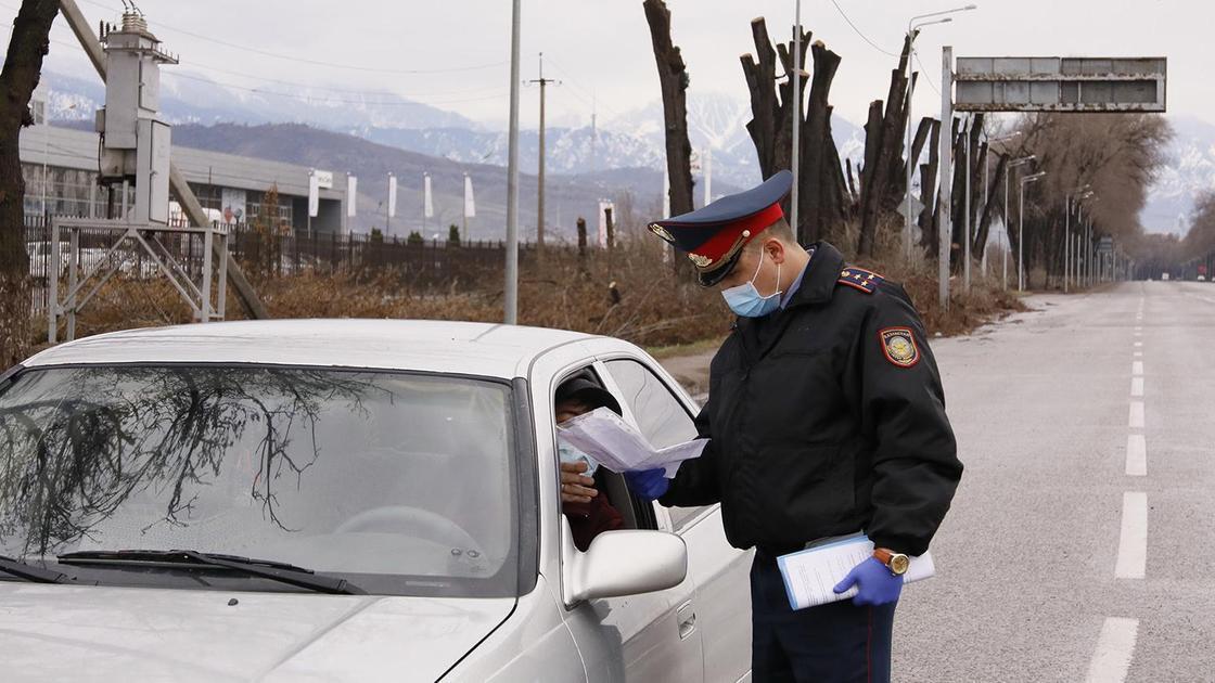 Полицейский проверяет документы у водителя авто
