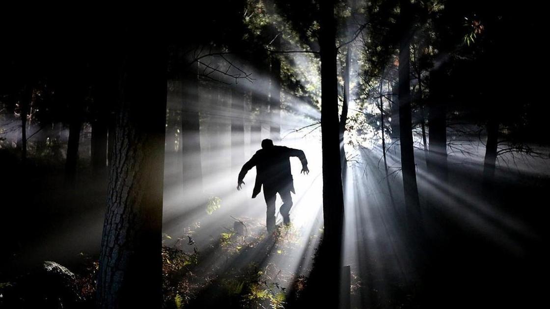 человек бежит по темному лесу