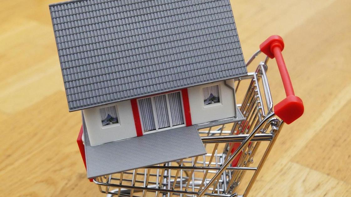 Игрушечный дом в тележке для покупок
