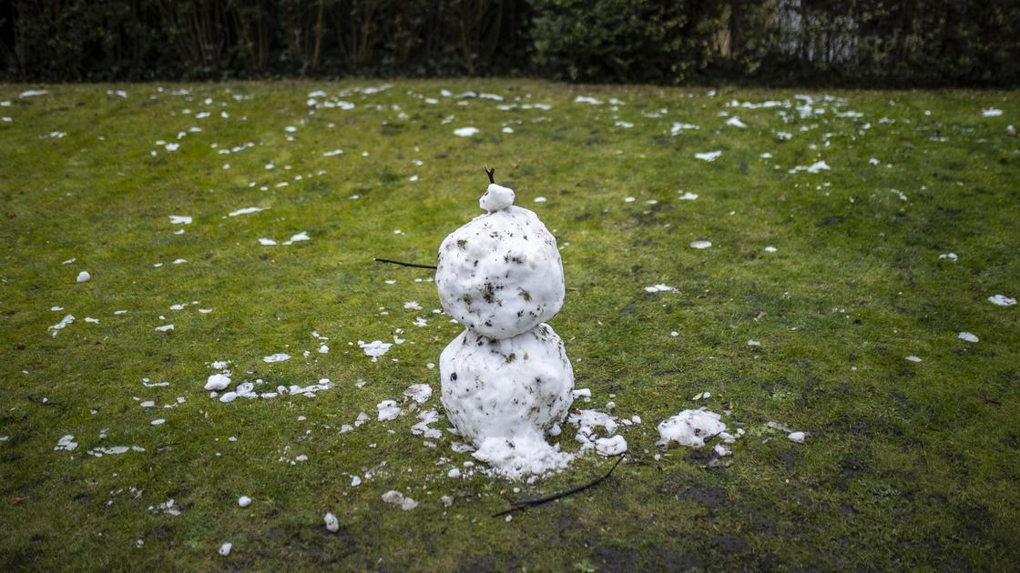 Снеговик стоит посреди зеленого поля