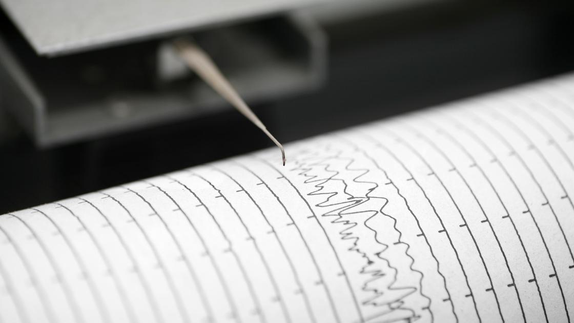 Сейсмограф регистрирует колебания земной коры