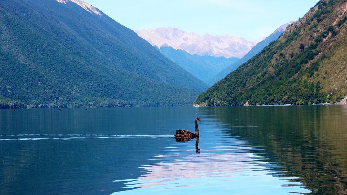 Жаңа Зеландия, Роторуа өзені