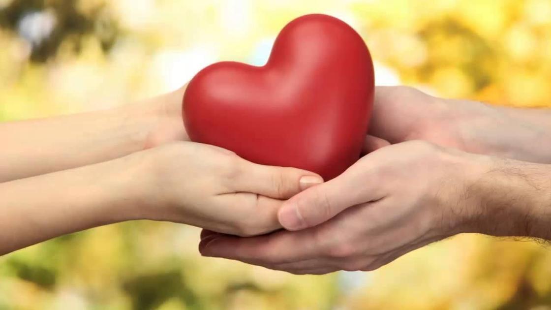 мужские и женские руки держат сердце