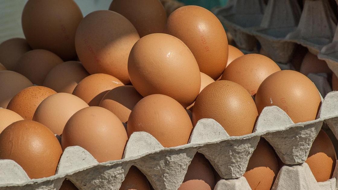 Яйца лежат в органайзере