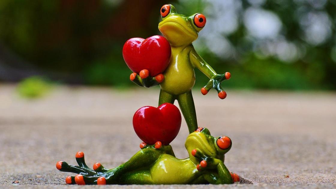 Две лягушки с сердечками